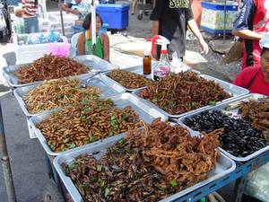 http://gaiasphere.fr/public/related/images/entomophagie.jpg